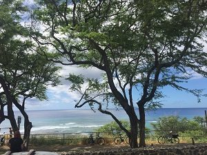 ハワイ、ブルーオーシャン