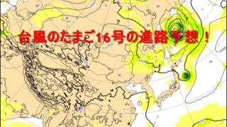 台風のたまご、16号