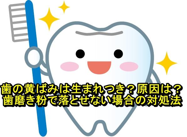 歯の黄ばみは生まれつき?原因は?おすすめの歯磨き粉と落とせない場合の対処法