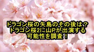 ドラゴン桜の矢島のその後は?ドラゴン桜2に山Pが出演する可能性も調査!