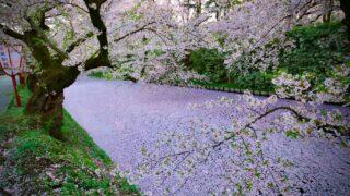 吉田美月喜は上野樹里や広瀬すずに似てる?インスタの可愛い画像まとめ