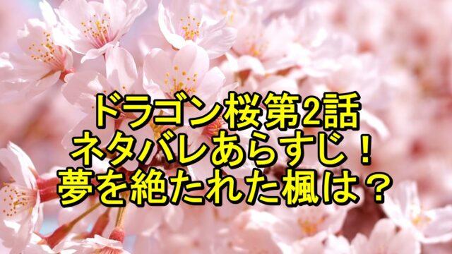 ドラゴン桜第2話のネタバレあらすじ!夢を絶たれた楓はどうする?