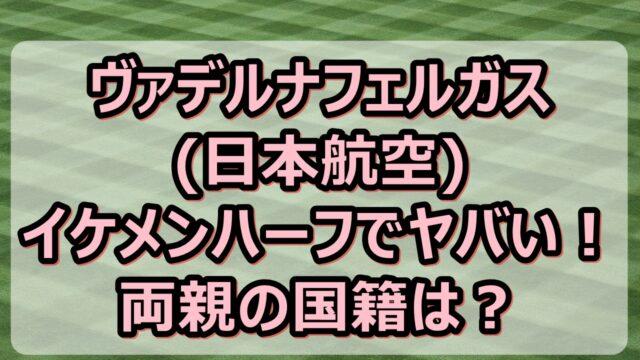 ヴァデルナフェルガス(日本航空)がイケメンハーフでヤバい!両親の国籍は?